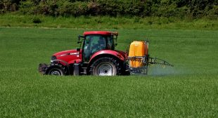 Modern Food Production Killing Us and the Planet
