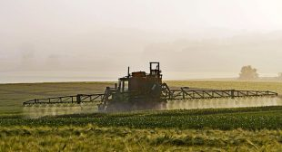 Slashing Pesticides Won't Hurt Farm Food Production Study Reveals