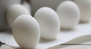 Got Eggs? How Our Gut Bacteria Can Use Them to Accelerate Cancer Growth