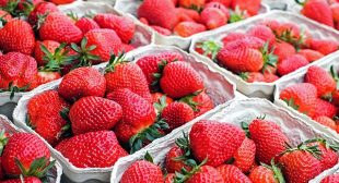 A Pint of Strawberries Daily 'Could Stave Off Breast Cancer' Study Shows