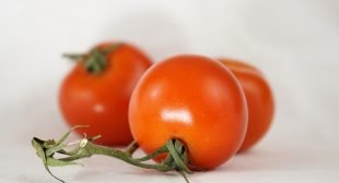 Study: Tomatoes Found to Stop Stomach Cancer