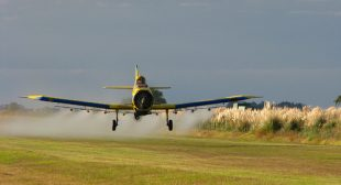 Study: Pesticides Are Much More Neurotoxic Than Previously Reported