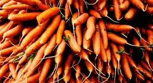 Why You Should Eat (and Grow) Carrots