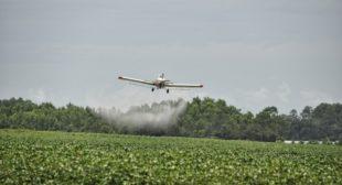 Brain-damaging Neurotoxic Pesticide Found in Hundreds of Foods: EPA Allowed