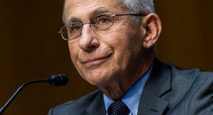 Dr. Anthony Fauci Book Scrubbed From Amazon After Email Dump